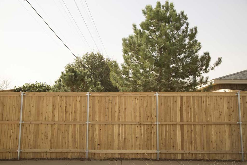 Privacy for your backyard in Lubbock, TX